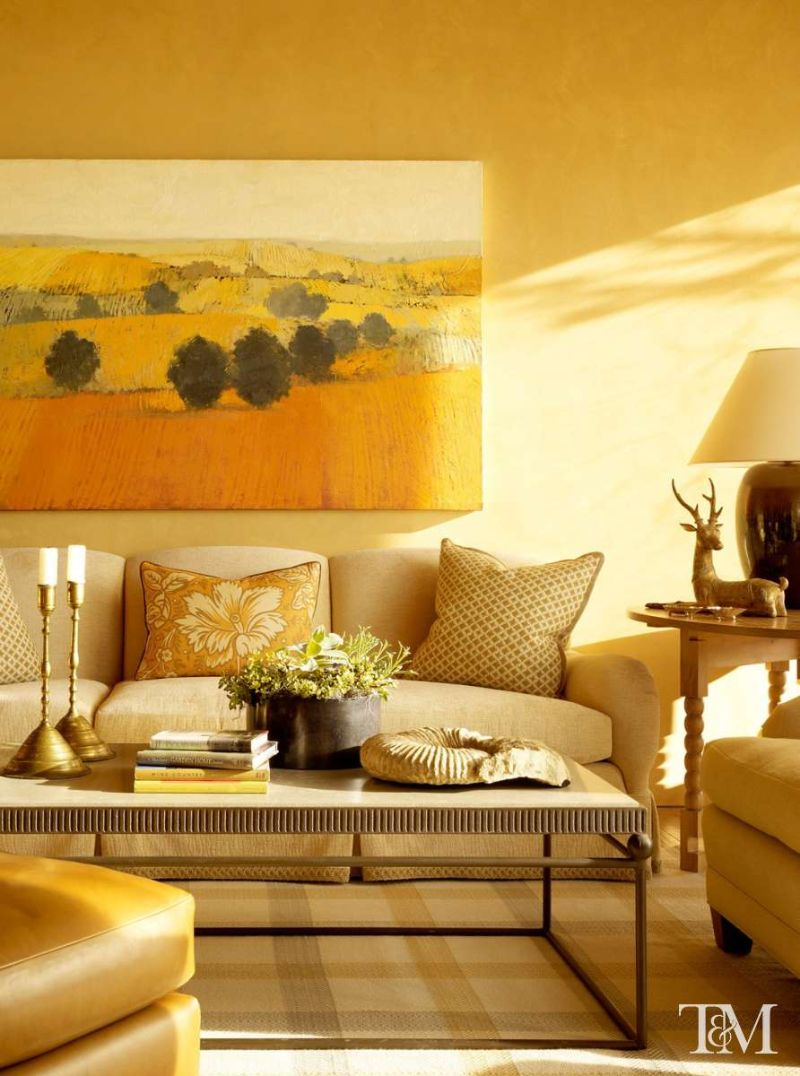 Tucker & Marks Design, Ideas of Sofa Upholstery Fabric For Living Rooms